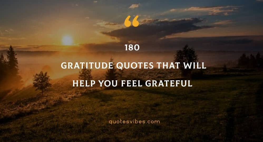 180 Gratitude Quotes That Will Help You Feel Grateful