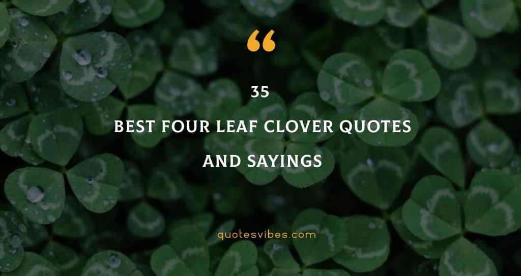 35 Best Four Leaf Clover Quotes And Sayings