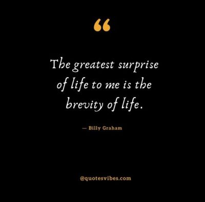 Quotes About Brevity Of Life